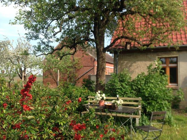 """Hollerhof - Oderbruch """"Ferienzimmer Apfelbaum"""""""