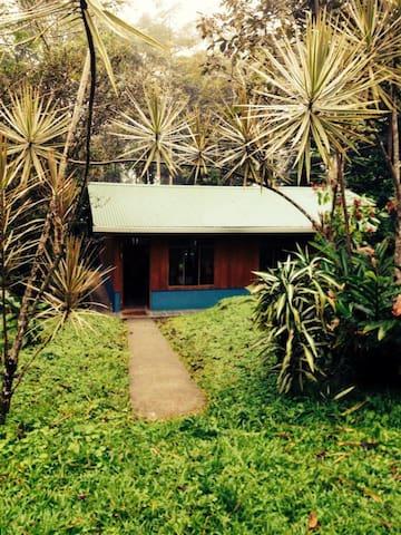 Linda casita en paraíso natural - Quesada