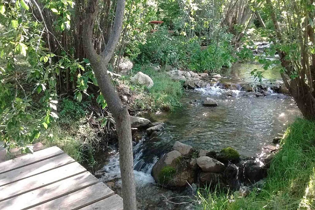 This little creek is on the same property as the sheep camp!