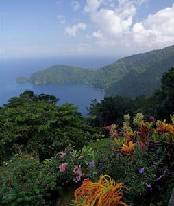 Mahogany Ridge, N Range, Trinidad