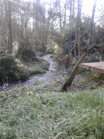 The Yurt garden is next to the stream that leads down to the river Tavy 2 minutes away.