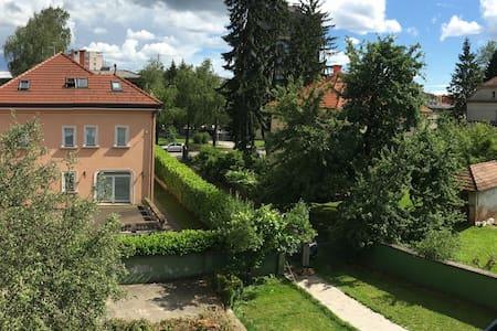Homely villa flat on top location - Karlovac - 公寓