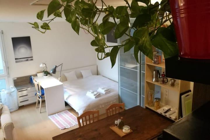 Cozy studio in Seefeld