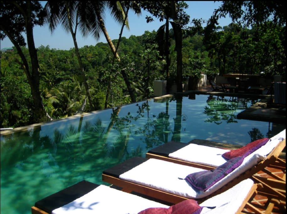 Relax by the Infinity Pool with lush jungle views