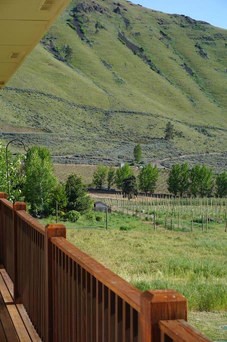 Ellensburg Canyon Winery