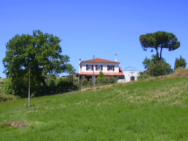 Country apartment near the sea and Parks - Spoltore - Apartamento