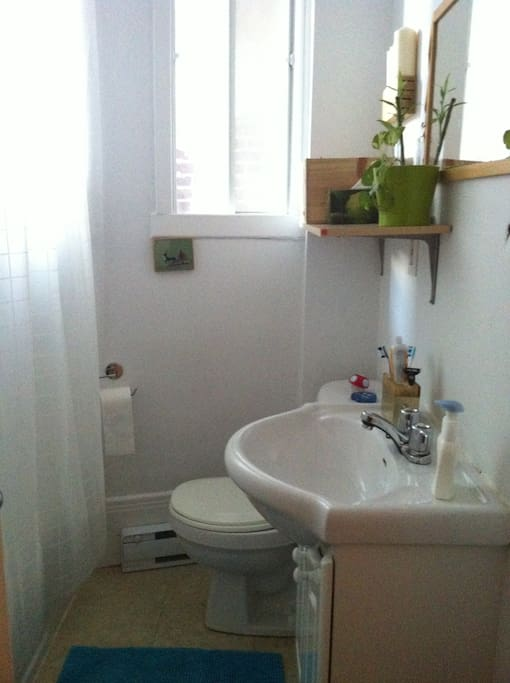 tidy BUT clean. shower and bathtub.