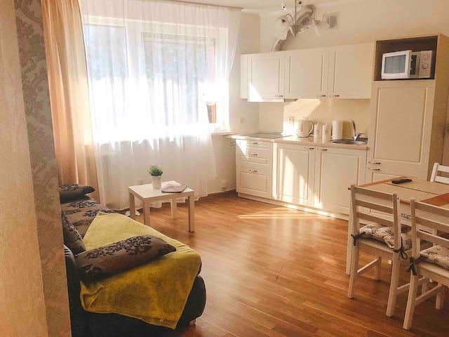 Comfortable apartment near the sea