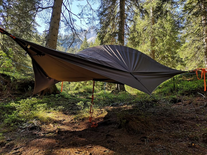Tree-Tent in a mountain forest