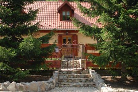 """Domek """"Joanna"""" w górach, w Kowarach - Kowary"""