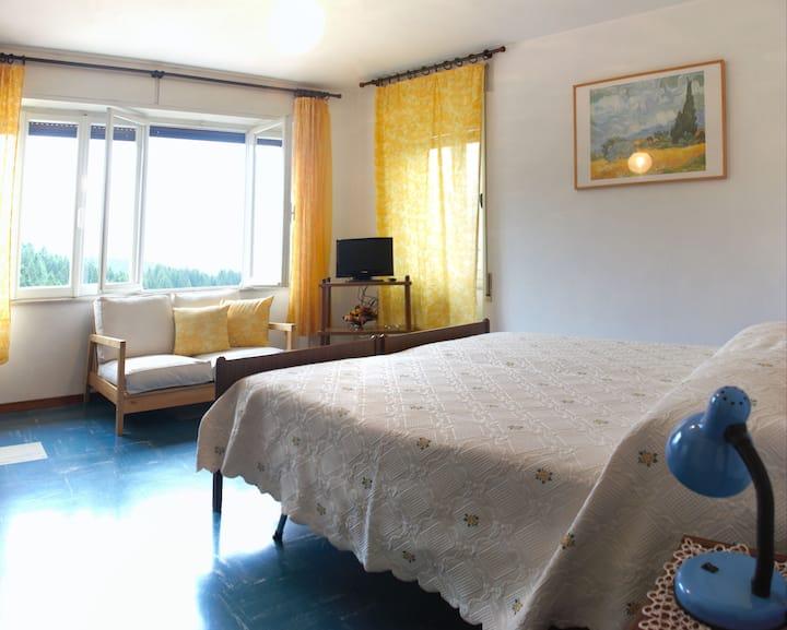 Casa Zanetto B&B -Vigo di Cadore