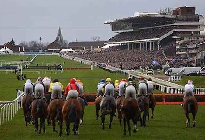 Gold Cup horse racing.