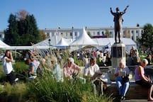 The Cricket festival.