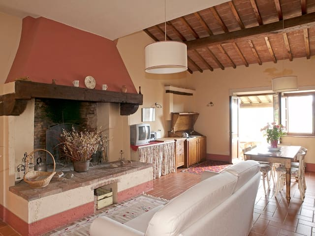 Country House near Siena Firenze