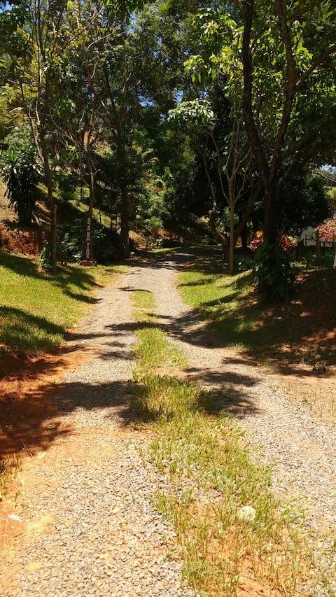 Conecte-se com a natureza de Minas Gerais!