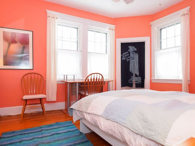 Cozy bedroom, quiet street, optional 2nd room - Baltimore - Ev