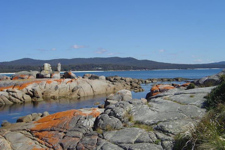 Bay of Fires Far Horizons Tasmania