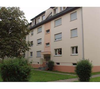 Bel appartement 3/4 pièces Benfeld - Benfeld