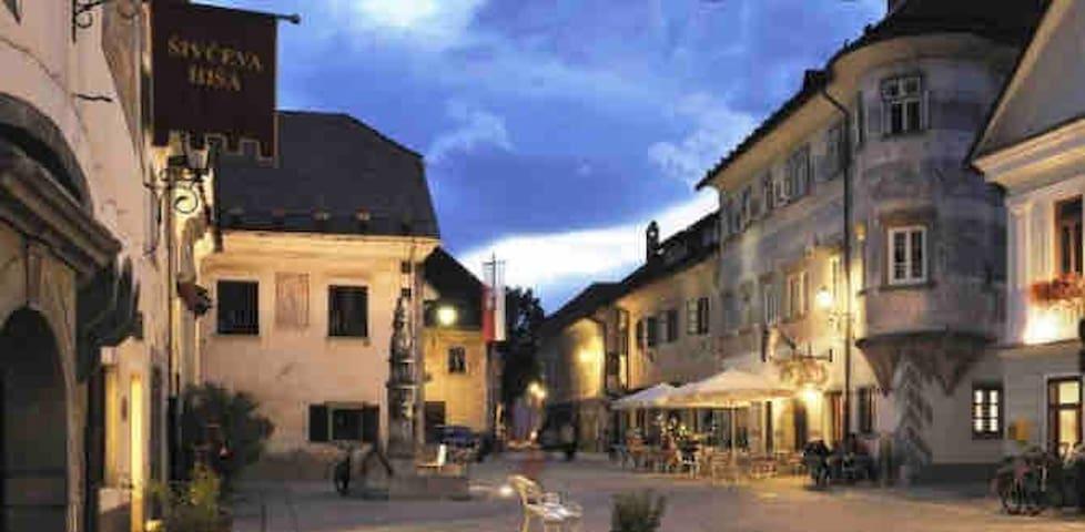 Sunny studio near Bled + free Julian card