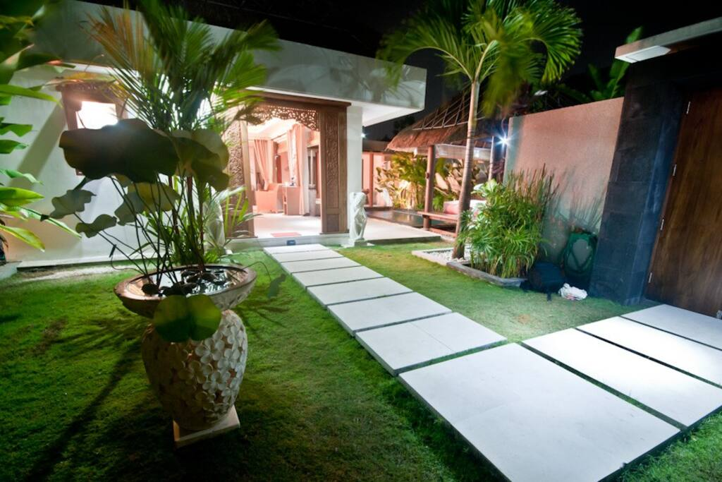 Garden in the night