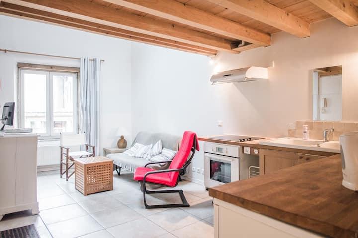 Saint Cyr au Mont d'Or 《L atelier》 Duplex de 40 m2