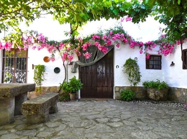 La Gineta - Casa del Patio (6 pers) - Alcalá la Real