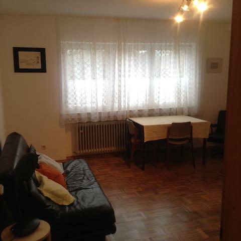 Gemütliche Einzimmer Wohnung - Marburg - Apartamento