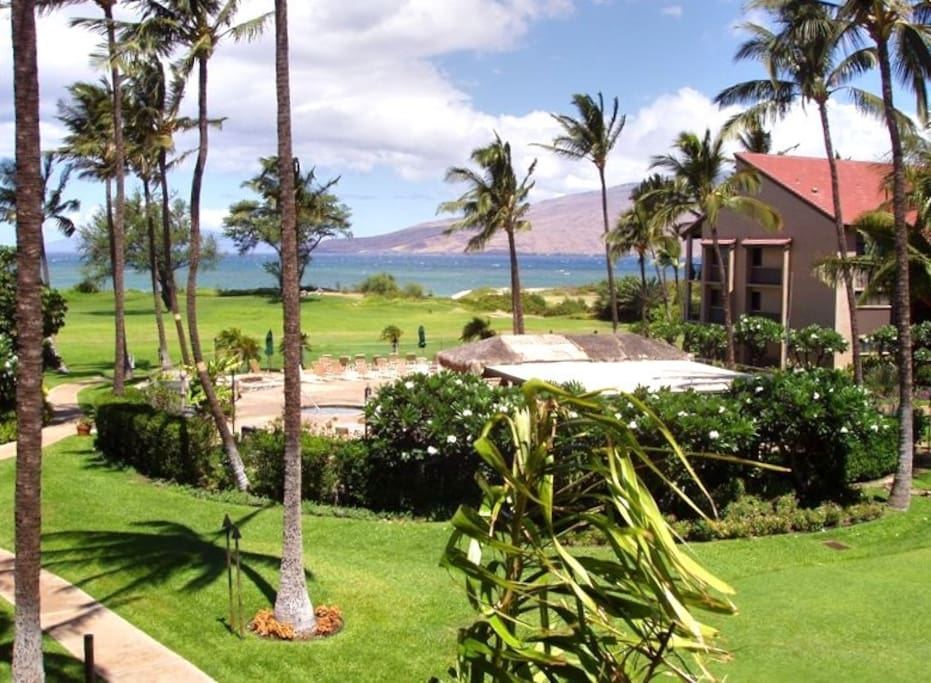 Ocean View in Maui - Apartments for Rent in Kihei, Hawaii ...