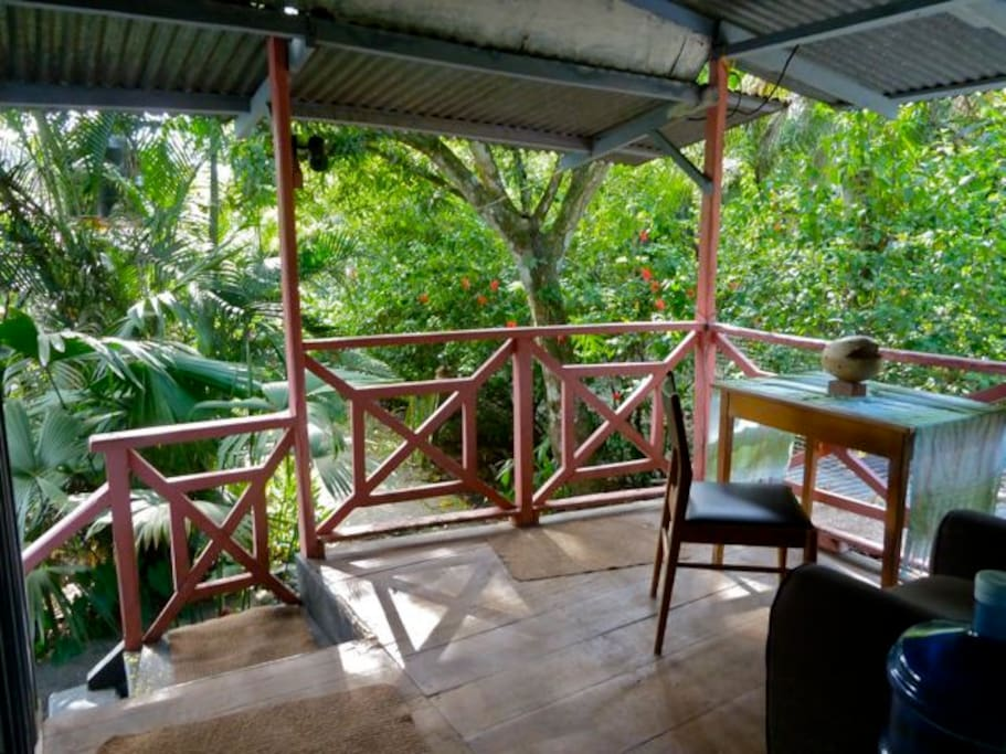 Jungle View from Upstairs Porch