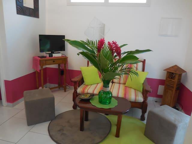 La Rosa Verde : Jolie petite maison, proche plage - Sainte-Anne - Huis