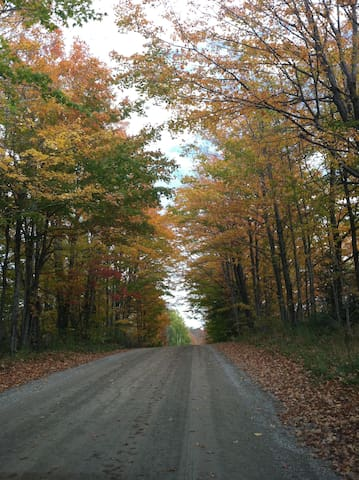 Take a country stroll to the creek on Concession 16 alongside the back of the property.