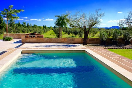 Quiet Villa among 1200 olives