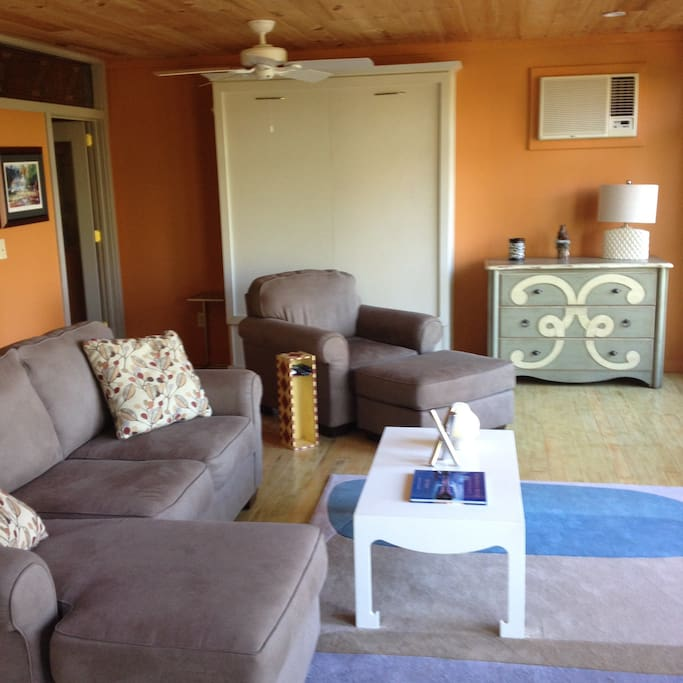 Living Area with Murphy Bed in Background