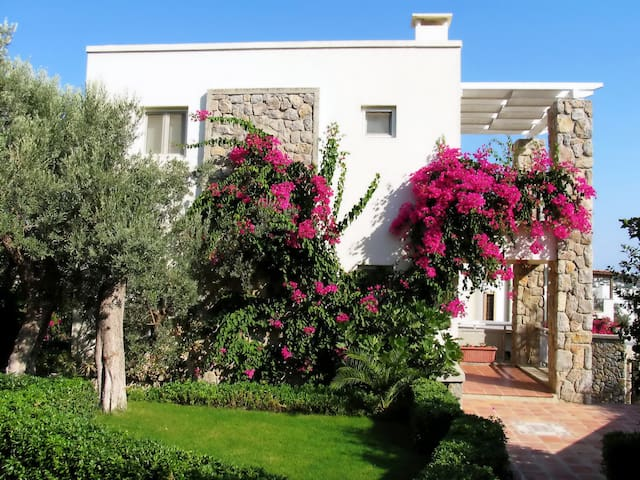 Idyll Villas, your home in Bodrum - Yalıkavak - Villa