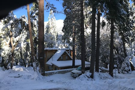 Critter Cabin, Your Acclimation Station 6,000+ ft