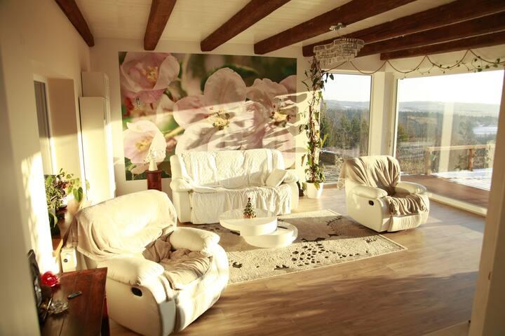 Salon z tarasem z widokiem na okolice  i kominkiem oraz rozkładaną sofą dwuosobową