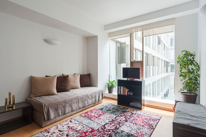 Boutique Apt. in Heart of Mexico City