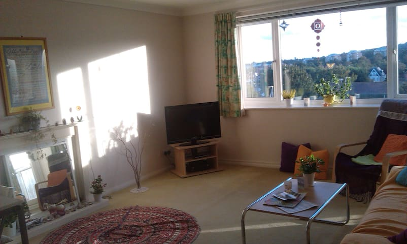 Twin room with amazing views near city centre - Eastbourne - Appartement