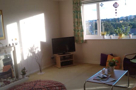 Twin room with amazing views near city centre - Eastbourne