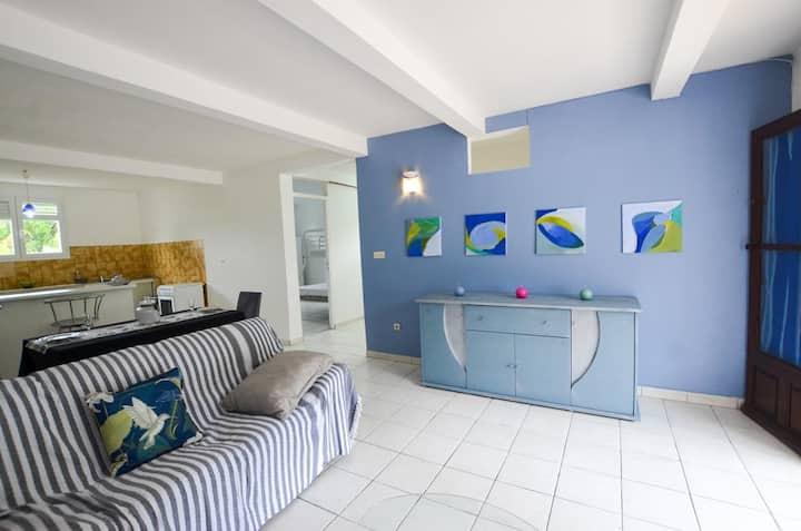 """""""Ciel bleu"""" grand T3, bas de villa, piscine privée"""