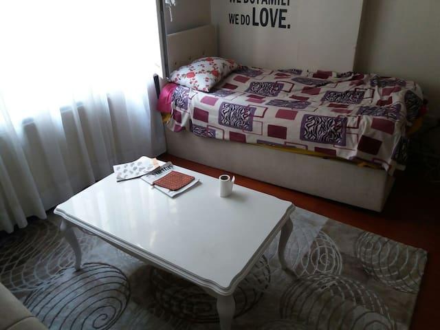 2 yatak odalı, merkezi yerde - Zeytinburnu - Apartment