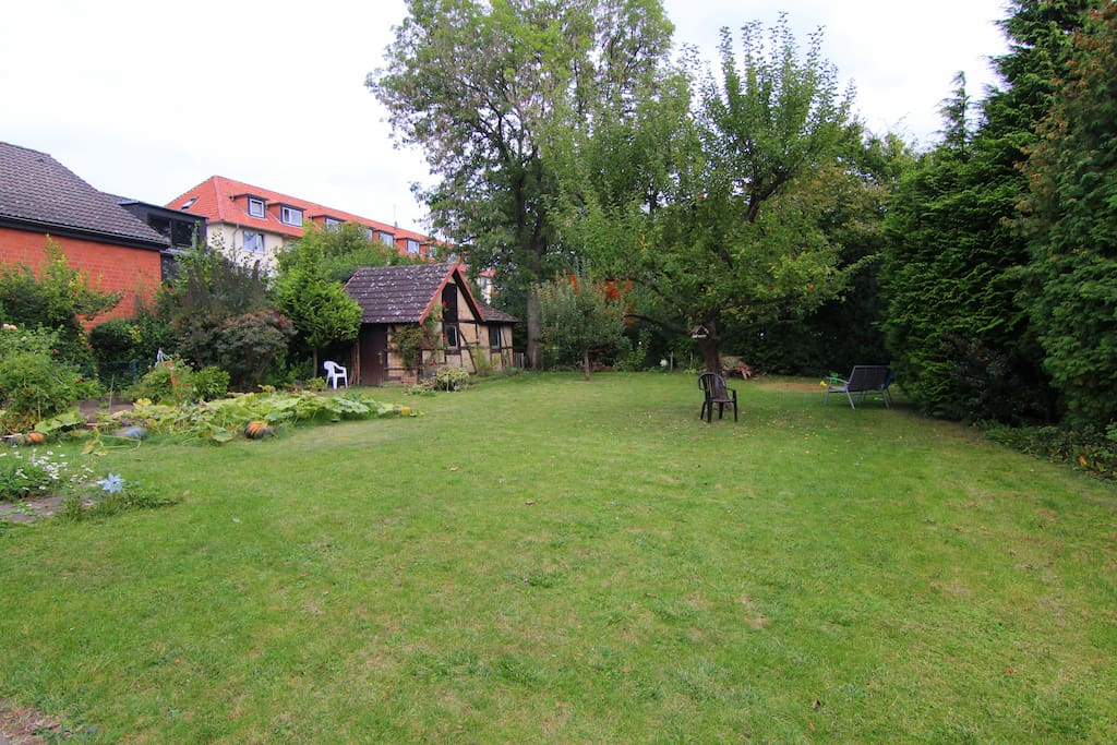 shared backyard / garden