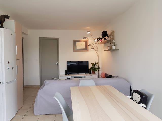 La pièce à vivre dotée d'un canapé d' angle  convertible en couchage d appoint 2 places. Vous y trouverez la wifi,les chaînes sfr,un écran plat 110cm.