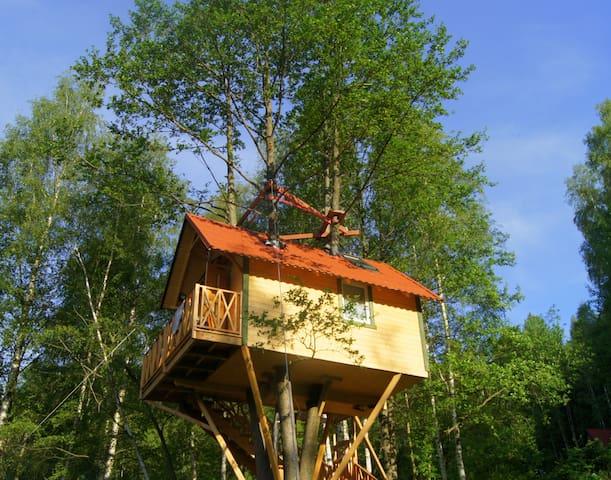 Domek na drzewie- GRZYWACZÓWKA