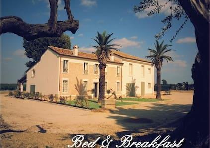 B&B Lugo, Casetta56 - lugo