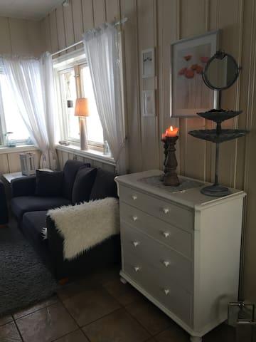 Koselig lite hus - Åmot - House