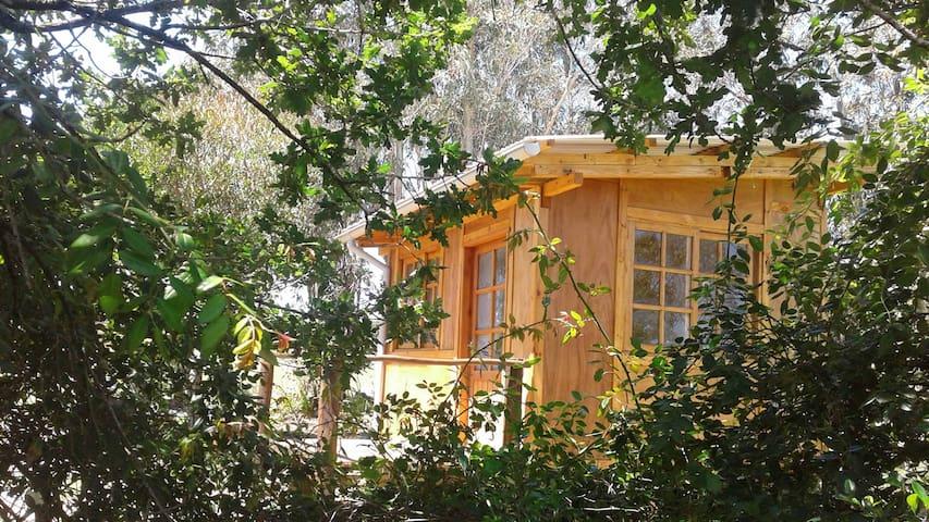 "Casa Amarita, cabaña ""Flor de Venus"" - Araminda"