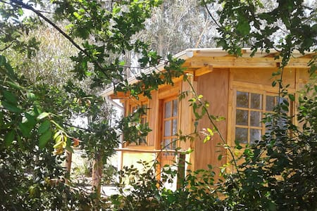 "Casa Amarita, cabaña ""Flor de Venus"" - Araminda - Cabin"