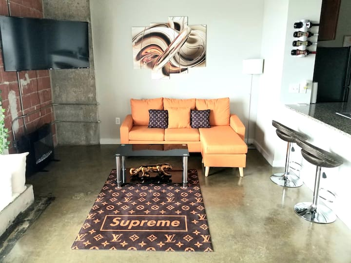 Medical Center Luxury Modern Studio Loft