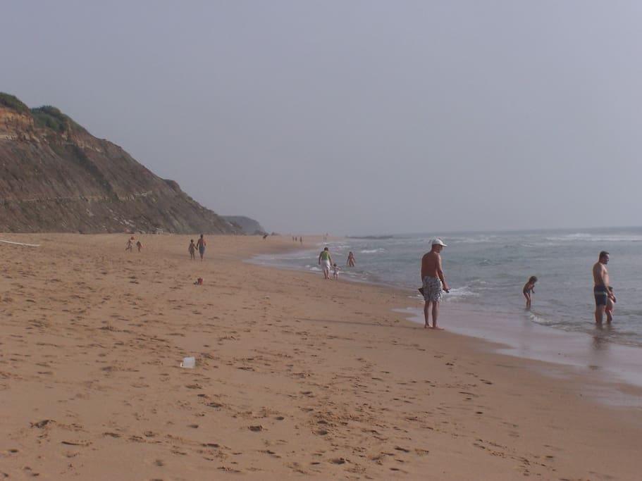 Areal Beach